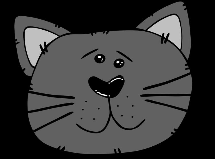 cat-30772_960_720